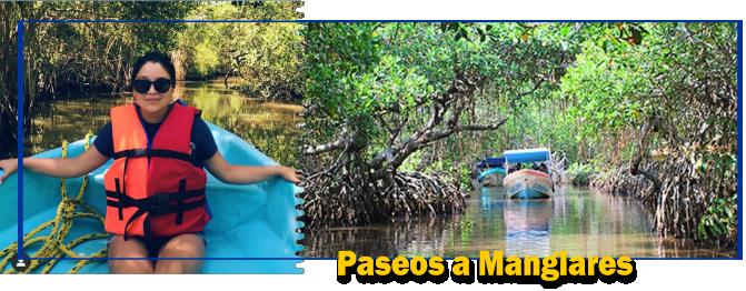 Soy tu Guía en Costa Esmeralda, Directorio de Paseos en Lancha a Manglares